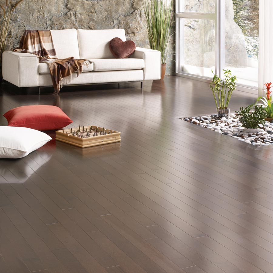 Maple Solid Lauzon Flooring 2-1/4 Arabica Semi-Gloss